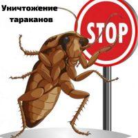 уничтожение тараканов пермь